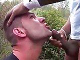 Français fait gicler un Arabe