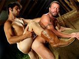 Cowboys gays poilus baisent dans l etable
