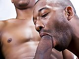 Vieux Black gay se fait baiser par un minet