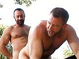 Bear gay enculé dans la nature