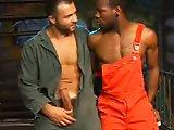 Malik se défoule dans un cul de Black