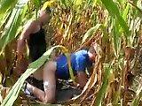 Paysan baisé par un touriste dans un champ…