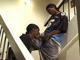 Baise de lascar gay dans la cage d escalier