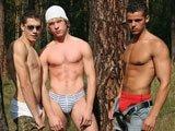 Trio de minets musclés en forêt